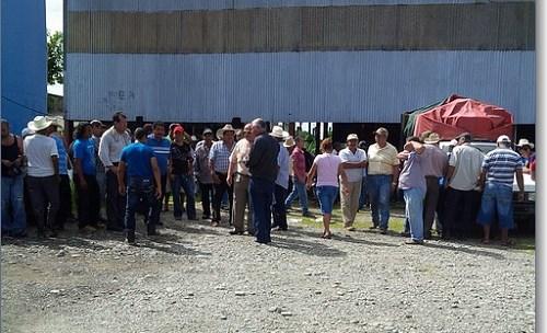 Productores de palma de aceite piden intervención de gobierno