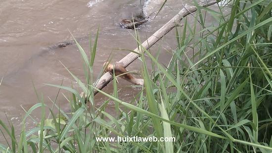 Encuentran extremidad de joven descuartizado en Huixtla