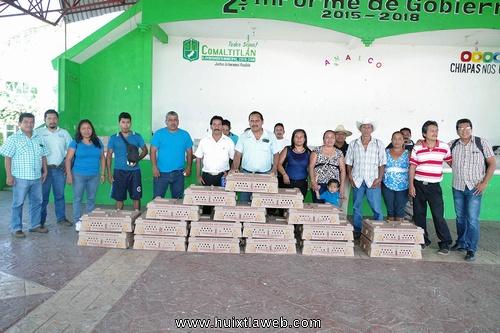 Fomento Agropecuario entrega pollitos para autoconsumo en Comaltitlán