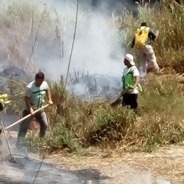Incendio en Tuzantán devastó más de 80 hectáreas