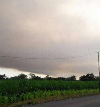 Sofocado el incendio en la reserva La Encrucijada