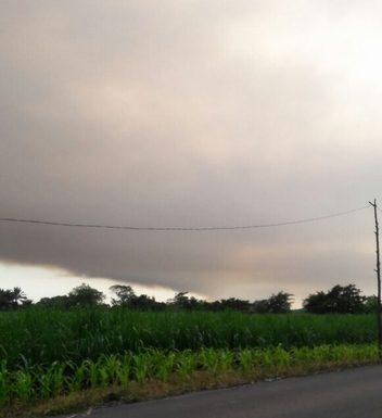 Se incendia reserva ecológica La Encrucijada en villa Comaltitlán