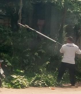 Con equipo nuevo derriban ramas de árboles: PC