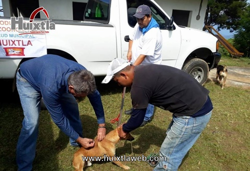 Gobierno municipal realiza campaña de atención animal en Santa Rita Coronado