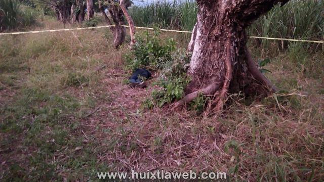 Encuentran decapitado entre cañal en Huixtla