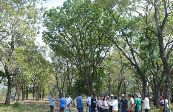 Listo las instalaciones de la unidad deportiva para celebrar la feria Huixtla 2019