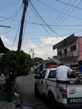 Tráiler causa daño al servicio de energía eléctrica a la ciudad