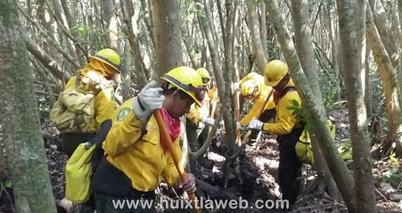 En Mazatán coordinan acciones para extinguir incendio forestal de la reserva de la biosfera la encrucijada