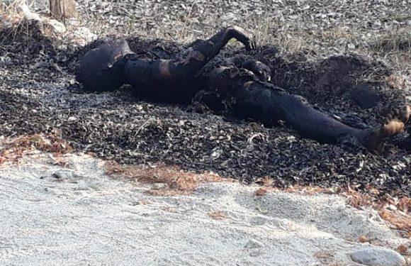 Localizan cuerpo calcinado a orillas de la carretera Mapastepec Pijijiapan