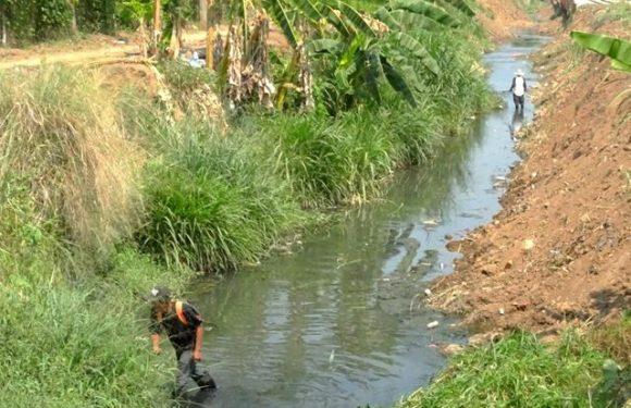 llevan a cabo el desazolve del arroyo el cusco
