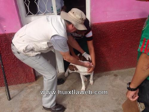 El área de zoonosis de Huixtla continua realizando acciones preventivas