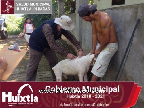Secretaría de salud de Huixtla realizó campaña de vacunación antirrábica