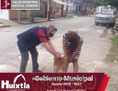 Continúa campaña de vacunación de mascotas en el municipio