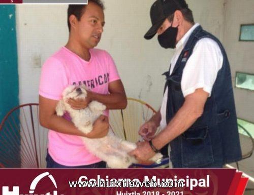 Gobierno de Huixtla continúa campaña de vacunación animal