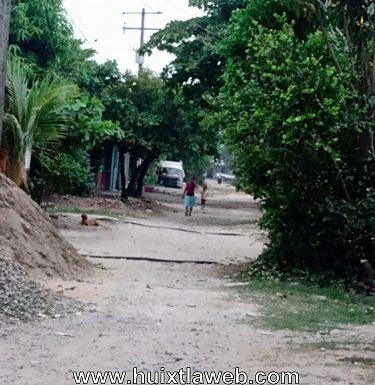Arboles y material obstruye calles en los milenios